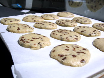 how to bake chocolate chip cookies essay