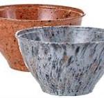 ray ray's garbarge bowls