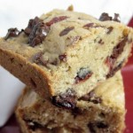 Dark Chocolate Cranberry Blondies