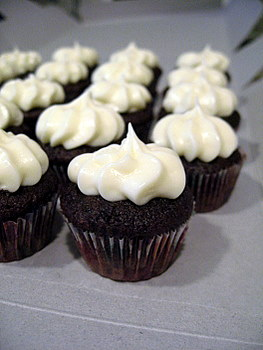 Mini Chocolate Cupcakes, up close and personal