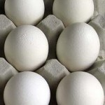 Carton of Large Eggs