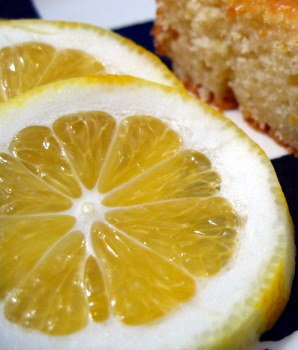 Meyer lemon slices