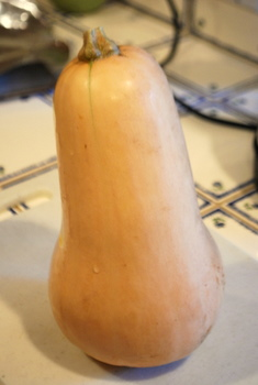 Whole Butternut Squash