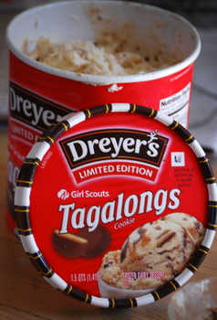 Dreyers's Tagalong Ice Cream