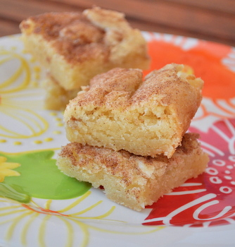 Snickerdoodle Blondies | Baking Bites