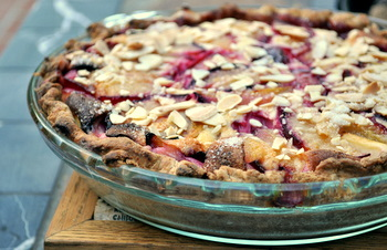 Plum Custard Pie with Almond Crust | Baking Bites
