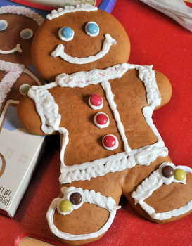 Trader Joe's Giant Gingerbread Man!