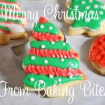 Merry Christmas from Baking Bites