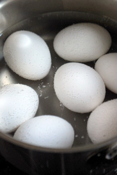 Eggs in simmering water