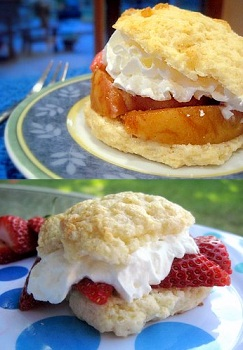 More Shortcake Ideas