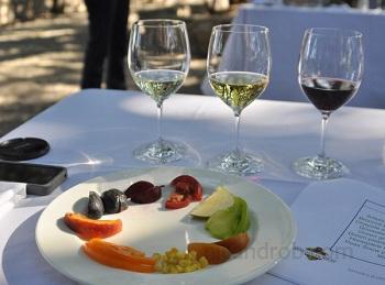 Kendall Jackson Wine Tasting