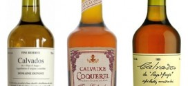 What is calvados?