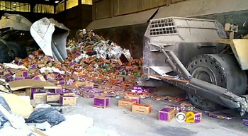 Girl Scout Cookies at the Dump