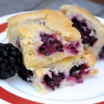 Blackberry Blondies