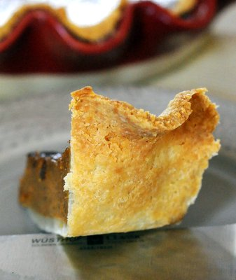 Flaky Vinegar Pie Crust
