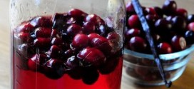 Homemade Cranberry Vanilla Vodka