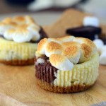 S'mores Mini Cheeseca