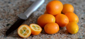 What are Kumquats?