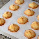 Food Processor Coconut Macaroons