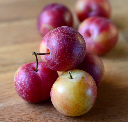 What is a cherry plum?