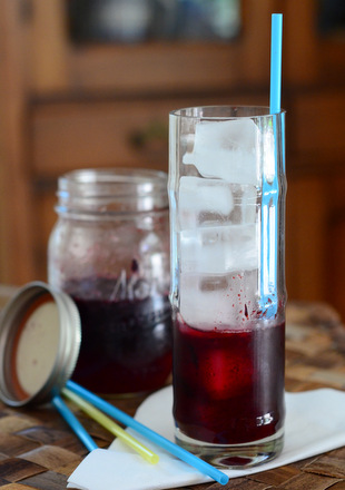 Blueberry Drinking Shrub