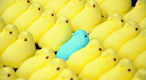 10 Fun Facts about Peeps!