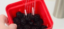 Chef'n Bramble Berry Basket, reviewed