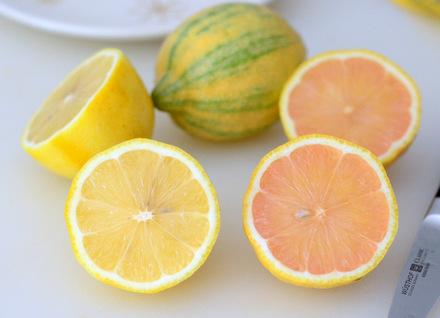 What are Pink Lemons?