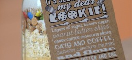 Trader Joe's It's Sedimentary My Dear Cookie! Mix, reviewed
