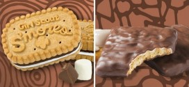 Girl Scouts Add S'Mores to 2017 Cookie Lineup