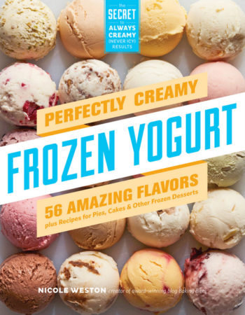 Perfectly Creamy Frozen Yogurt